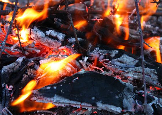 Incendi, dal 1 Luglio vietato accendere fuochi in tutta la Toscana